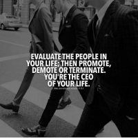 Life, Memes, and Tag Someone: UATE THE PEOPLEN  EVALUATE THE PEOPLE IN  YOUR LIFE: THEN PROMOTE  DEMOTE OR TERMINATE.  YOU'RETHE CEO  OF YOUR LIFE  @BUSINESSMINDSETI01 Tag someone 👇... Follow @businessmindset101 thefutureentrepreneur