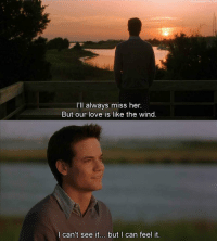 Love, Memes, and 🤖: ub  I'll always miss her.  But our love is like the wind  l can't see it... but | can feel it 16 yrs ago A Walk To Remember has hit theaters but it still makes me cry 😭😩😔 https://t.co/cj2iFPA94S