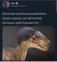 Dinosaurs, Hair, and Dank Memes: uba  @nigeriansosa  Since hair cant be recovered from  fossils, nobody can tell me that  dinosaurs didnt look like this Has this gone too far
