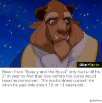 """What kind of enchantress curses a 10-year-old for not letting a stranger into his house?: uber  facts  Beast from """"Beauty and the Beast"""" only had until his  21 st year to find true love before the curse would  become permanent. The enchantress cursed him  When he was only about l O or l l-years-old  @UberFacts What kind of enchantress curses a 10-year-old for not letting a stranger into his house?"""