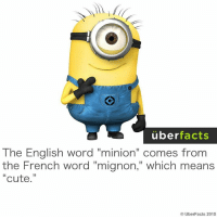 "http://instagram.com/uberfacts: uber  facts  The English word ""minion"" comes from  the French word ""mignon,"" which means  Cute  UberFacts 2015 http://instagram.com/uberfacts"
