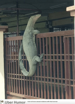 failnation:  Excuse me, sir. Do you have time to talk about our lord and savior, Godzilla???: Uber Humor  I did not have sexual relations with that woman. failnation:  Excuse me, sir. Do you have time to talk about our lord and savior, Godzilla???