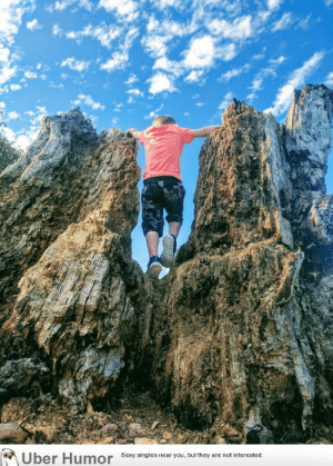 Climbing, Tumblr, and Uber: Uber Humor Sesy singles near you but they are notinterested failnation:  My boy climbing an old rotten tree stump looks like a giant climbing mountains.