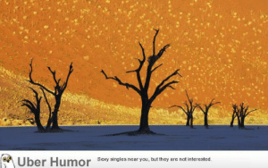 Omg, Sexy, and Tumblr: Uber Humor  Sexy singles near you, but they are not interested omg-images:  This is not a painting: Namib-Naukluft National Park, Namibia