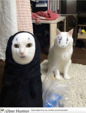 Sexy, Tumblr, and Uber: Uber Humor  Sexy singles near you, but they are not interested. failnation:  There's no such thing as a perfect face swa—