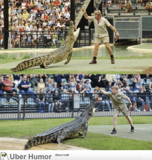 failnation:  Robert Irwin feeding the same croc, in the same place as his father, Steve Irwin, 15 years later.: Uber Humor  Steve holt! failnation:  Robert Irwin feeding the same croc, in the same place as his father, Steve Irwin, 15 years later.