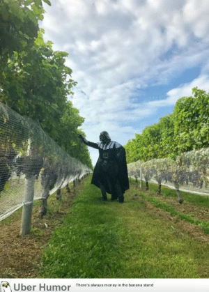 Darth Vader, Money, and Tumblr: Uber Humor  There's always money in the banana stand failnation:  This weekend I fulfilled a lifelong dream I never realized I had by going out to the Long Island vineyards dressed as Darth Vader for no particular reason