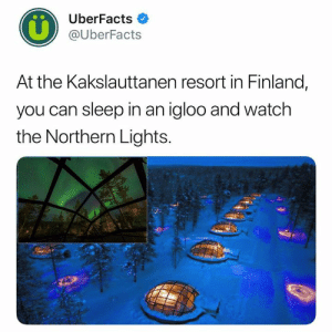 Planning my next vacation now. (📷: Hotel Kakslauttanen Glass Igloo): UberFacts  @UberFacts  At the Kakslauttanen resort in Finland,  you can sleep in an igloo and watch  the Northern Lights. Planning my next vacation now. (📷: Hotel Kakslauttanen Glass Igloo)