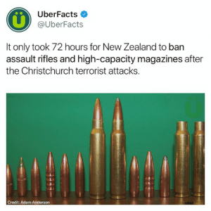 Memes, Wow, and New Zealand: UberFacts  @UberFacts  It only took 72 hours for New Zealand to ban  assault rifles and high-capacity magazines after  the Christchurch terrorist attacks.  Credit: Adam Anderson Wow.