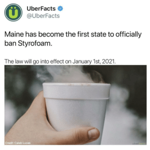 Maine takes a stand: UberFacts  @UberFacts  Maine has become the first state to officially  ban Styrofoam  The law will go into effect on January 1st, 2021  überfacts  Credit: Caleb Lucas Maine takes a stand