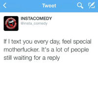 Funny, Memes, and Texting: Tweet  INSTA COMEDY  medy.  @insta comedy  nstd  If I text you every day, feel special  motherfucker. It's a lot of people  still waiting for a reply Straight up like that 🙌