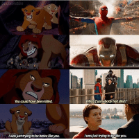 Memes, Mufasa, and Avengers: uchanstan  You could have been killed.  was just trying to bebrave like you.  What ifsomebody had died?  Iwas just trying to belikeyou. Spiderman Homecoming X Lion King Parallels Peter just wants Tony to be proud of him😭 Edit by: @buchanstan spiderman spidermanhomecoming amazingspiderman spiderman2 peterparker tomholland andrewgarfield tobeymaguire captainamericacivilwar marvel avengers avengersinfinitywar infinitywar emmastone gwenstacy maryjane spiderman3 lionking simba mufasa