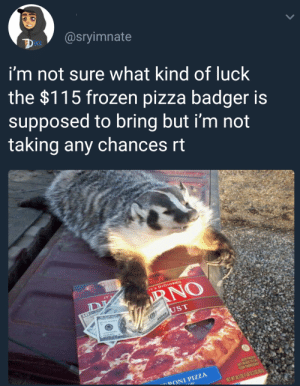 Frozen, Pizza, and Tumblr: UCk  i'm not sure what kind of luck  the $115 frozen pizza badger is  supposed to bring but i'm not  taking any chances rt  ST  DONI PIZZA nocountryforoldjetpacks:  thegestianpoet: Update I just got an opportunity to make exactly $115 and i'm not kidding so like. Reblog to make $115.   Idk what I have to lose at this point