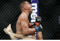 Boxing, Memes, and Ufc: UFC  MMA This fight was special. I wish Pettis didn't break his hand. I would've loved to see it go on ufc mma bellator wsof fight jj jiujitsu muaythai wrestling boxing kickboxing grappling funnymma ufcmeme mmamemes onefc warrior PrideFC prideneverdies