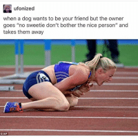 """So true 🤣: ufonized  when a dog wants to be your friend but the owner  goes """"no sweetie don't bother the nice person"""" and  takes them away  CAP So true 🤣"""