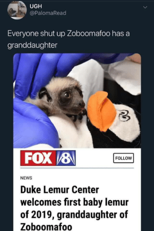 So apparently Zoboomafoo has a granddaughter now.: UGH  @PalomaRead  Everyone shut up Zoboomafoo has a  granddaughter  FOX /8  FOLLOW  NEWS  Duke Lemur Center  welcomes first baby lemur  of 2019, granddaughter of  Zoboomafoo So apparently Zoboomafoo has a granddaughter now.