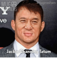Funny, Memes, and Pictures: ugmashers  ve  Jackie Channing latum Top 24 Funny Memes and Funny Pictures 18