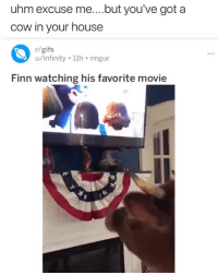 What type of dog is this: uhm excuse me....but you've got a  cow in your house  r/gifs  u/Infinity 11h imgur  Finn watching his favorite movie What type of dog is this
