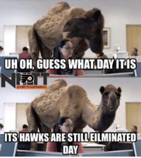 guess what day it is: UHOH GUESS WHAT DAY IT IS  NECTT  ITS HAWKSARESTILLEILMINATED  DAY