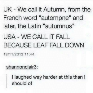 "Dont even get me started on the metric and english system!: UK - We call it Autumn, from the  French word ""autompne"" and  later, the Latin ""autumnus""  USA WE CALL IT FALL  BECAUSE LEAF FALL DOWN  19/11/2013 11:44  shannonclair3:  i laughed way harder at this than i  should of Dont even get me started on the metric and english system!"