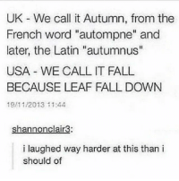 "FALL DOWN LEAF: UK We call it Autumn, from the  French word ""autompne"" and  later, the Latin ""autumnus""  USA WE CALL IT FALL  BECAUSE LEAF FALL DOWN  19/11/2013 11:44  shannonclair3:  i laughed way harder at this than i  should of FALL DOWN LEAF"