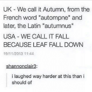 """Keep it simpleomg-humor.tumblr.com: UK We call it Autumn, from the  French word """"autompne"""" and  later, the Latin """"autumnus""""  USA WE CALL IT FALL  BECAUSE LEAF FALL DOWN  19/11/2013 11:44  shannonclair3:  i laughed way harder at this than i  should of Keep it simpleomg-humor.tumblr.com"""