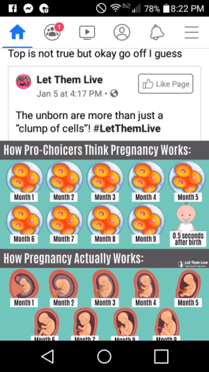 """A rare instance where the Facebook comment is not the insane part.: ull 78% 8:22 PM  Top is not true but okay go off I guess  Let Them Live  O Like Page  Jan 5 at 4:17 PM• O  The unborn are more than just a  """"clump of cells""""! #LetThemLive  How Pro-Choicers Think Pregnancy Works:  Month 1  Month 2  Month 3  Month 4  Month 5  0.5 seconds  after birth  Month 7  Month 8  Month 9  Month 6  How Pregnancy Actually Works:  Let Them Live  Month 2  Month 1  Month 3  Month 4  Month 5  Month 9  Month 9  Month 6  Month 7 A rare instance where the Facebook comment is not the insane part."""