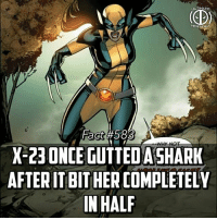 Memes, Wolverine, and Sharks: ULTIMATE  Fact #583  X 23 ONCE GUTTED ASHARK  AFTER ITBITHER COMPLETELY  IN HALF Ah man dont you hate it when sharks bite you in half! -- Reboot Wolverine or continue the franchise with X-23?
