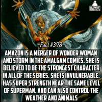 Amazon, Definitely, and Memes: ULTIMATE  HERO FACTS  Fact #398  AMAZON ISA MERGER OF WONDER WOMAN  ANDSTORMIN THE AMALGAMCOMICS. 5HE 15  BELIEVED TO BE THE STRONGEST CHARACTER  IN ALL OF THE SERIES. SHEISINVULNERABLE,  NEAR THE  SAME LEVEL  OF SUPERMAN, ANDCANALSOCONTROL THE  WEATHERANDANIMALS Wow! I think Storm is definitely the most underrated Marvel character! -- Who do you think the most underrated character in Marvel is?