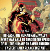 Memes, 🤖, and Hero: ULTIMATE  HERO FACTS  Fact #463  INFLASH: THE HUMANRACE, WALLY  WEST WAS ABLE TOABSORBTHE SPEED  OF ALL THE HUMANSONEARTHAND RUN  FASTER THAN A PLANCKINSTANT When he's faster than the concept of speed☺. Good job DC! -- Favorite Speedster in any universe?