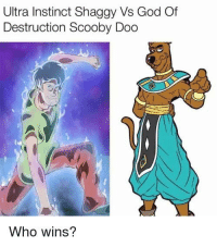 Scooby Doo: Ultra Instinct Shaggy Vs God Of  Destruction Scooby Doo  Who wins?
