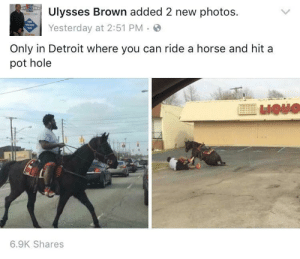 Detroit, Horse, and Photos: Ulysses Brown added 2 new photos.  Yesterday at 2:51 PM.  Only in Detroit where you can ride a horse and hit a  pot hole  E 110110  6.9K Shares A place like no other
