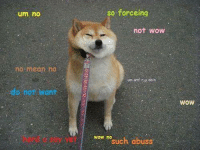 funny meme :^}: um no  no mean no  do not want  so force ing  not wow  um wtf ret dain  WOW no  abuss  such WOW funny meme :^}