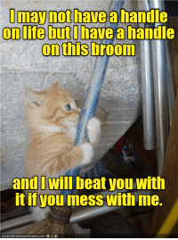 Mess With Me