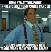 Pretty much.: UMM. YEAAT THIS POINT  FPRESIDENTTRUMP CURED CANCER  LIBERALS WOULD COMPLAIN HE IS  TAKING WORK FROM THE GRIM REAPER Pretty much.