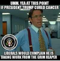 Prepare to Take America Back: UMM. YEAAT THIS POINT  IF PRESIDENT TRUMP CURED CANCER  ARE  RICA  LIBERALS WOULD COMPLAIN HE IS  TAKING WORK FROM THE GRIM REAPER Prepare to Take America Back