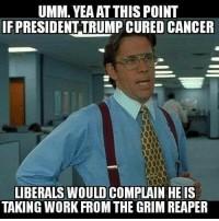 Extremely Pissed off RIGHT Wingers 2: UMM. YEAAT THIS POINT  IF PRESIDENT TRUMP CURED CANCER  LIBERALS WOULD COMPLAIN HE IS  TAKING WORK FROM THE GRIM REAPER Extremely Pissed off RIGHT Wingers 2