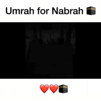 Memes, Paradise, and Ramadan: Umrah for Nabrah A brother decide to gift our sister, Nabra with an Umrah in Ramadan. We all know an Umrah in Ramadan reward is that of Hajj. May Allah reward him and grant our sister Nabra the highest rank in paradise. Ameen 💕 ▃▃▃▃▃▃▃▃▃▃▃▃▃▃▃▃▃▃▃▃ @abed.alii 📝