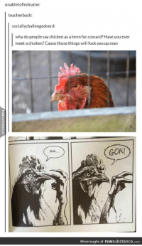How To Fuck A Chicken