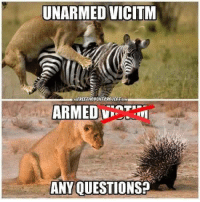 Memes, 🤖, and Questions: UNARMED VICITM  FREETHOUCHTEROJECTIcOM  ARMED  ANY QUESTIONS?