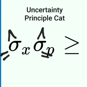 Baby, Cat, and Heisenberg: Uncertainty  Principle Cat What if Schrödinger and Heisenberg had a baby?