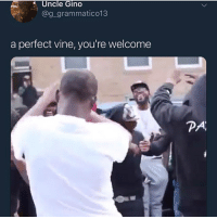 Funny, Goals, and Love: Uncle Gino  @g_grammatico13  a perfect vine, you're welcome  PA Goodmorning y'all, goodnight Aussie niggas @larnite • ➫➫➫ Follow @Staggering for more funny posts daily! • (Ignore: memes like4like funny music love comedy me goals)