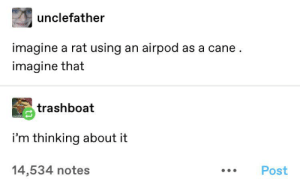 Imagine: unclefather  imagine a rat using an airpod as a cane.  imagine that  trashboat  i'm thinking about it  14,534 notes  Post Imagine
