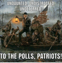Memes, Patriotic, and 🤖: UNDAUNTED, UNDISTRAGTED,  UNDETERRED  TO THE POLLS, PATRIOTS  mematic.m #Onward!