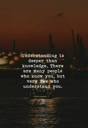 Knowledge, Understanding, and Who: Understanding is  deeper than  knowledge. There  are many people  who know you, but  very few who  understand you.
