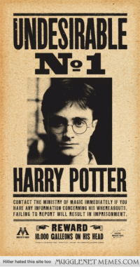 "Harry Potter, Head, and Memes: UNDESIRABLE  HARRY POTTER  CONTACT THE MINISTRY OF MAGIC IMMEDIATELY IF YOU  HAVE ANY INFORMATION CONCERNING HIS WHEREABOUTS.  FAILING TO REPORT WILL RESULT IN IMPRISONMENT.  REWARD  계)  10.000 GALLEONS ON HIS HEAD  A  Hitler hated this site too  MUGGLENET MEMES.COM <p>Brings back memories doesn&rsquo;t it? <a href=""http://ift.tt/1kdpPDy"">http://ift.tt/1kdpPDy</a></p>"