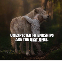 Double tap if you agree👊👌 words2success - TAG AN UNEXPECTED FRIEND!!: UNEXPECTED FRIENDSHIPS  ARE THE BEST ONES. Double tap if you agree👊👌 words2success - TAG AN UNEXPECTED FRIEND!!