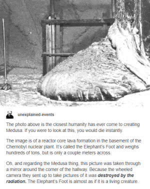 Taken, Formation, and Camera: unexplained-events  The photo above is the closest humanity has ever come to creating  Medusa. If you were to look at this, you would die instantly  The image is of a reactor core lava formation in the basement of the  Chernobyl nuclear plant. It's called the Elephant's Foot and weighs  hundreds of tons, but is only a couple meters across.  Oh, and regarding the Medusa thing, this picture was taken through  a mirror around the corner of the hallway. Because the wheeled  camera they sent up to take pictures of it was destroyed by the  radiation. The Elephant's Foot is almost as if it is a living creature. The Elephants Foot is no match for the Russians