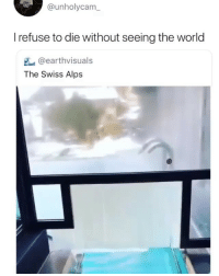 Memes, World, and Amazing: @unholycam  I refuse to die without seeing the world  @earthvisuals  The Swiss Alps Amazing