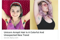 Dumb, Hair, and Unicorn: Unicorn Armpit Hair Is A Colorful And  Unexpected New Trend  social.diply.com <p>I don&rsquo;t know who decided that 2017 was the year of the dumb unicorn trends, but this needs to stop.</p>